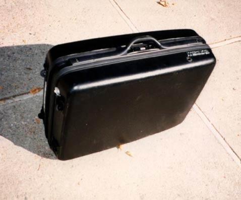 Чемоданомобили: багаж перевозит пассажиров