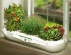 Домашняя аэропонная ферма накачивает салат кислородом