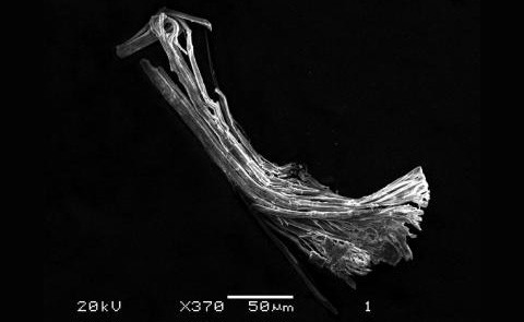 Химики создали бронзовую атомарную матрёшку