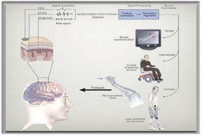 "Интерфейсы ""мозг-компьютер"": практика применения и перспективы"