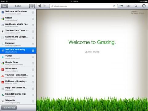 Лучшие альтернативные браузеры для ipad