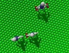 Мелких ходоков научили таскать молекулярные тяжести