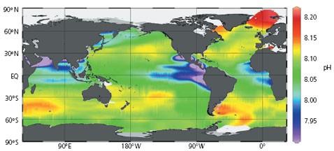 Мировой океан превращается в смертельную кислоту