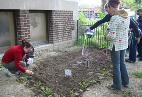 Партизанское озеленение: огород возвращает город природе