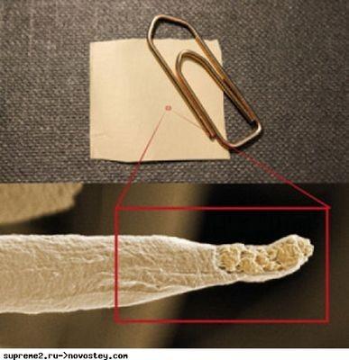 Ученые разработали одежду, которой не страшен пот