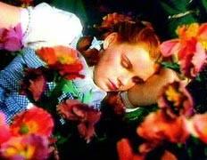 Вам ине снилось: полезнее спать, не видя снов