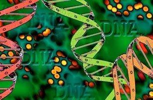 Вирусы мобилизуются