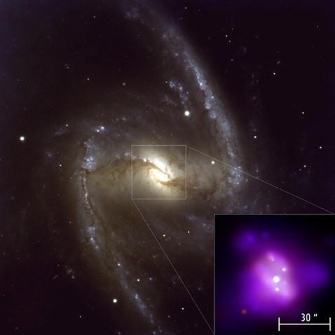 Затмение чёрной дыры доложило о гибели вещества