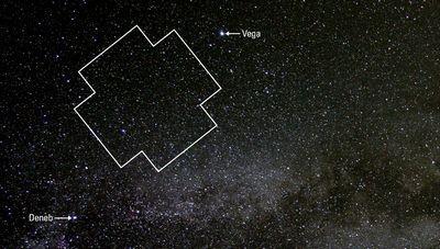 Жизнь в галактике может быть очень распространённым явлением